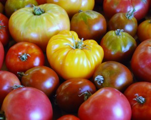 heirloom_tomatoes_02