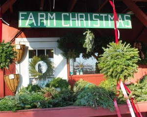 Farm_Christmas