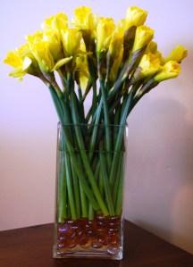 Daffodils_Vase