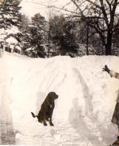 eeyore_snow