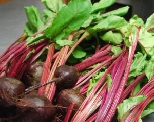 beets_03
